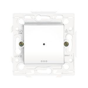 Interrupteur temporisé Arnould 300w - 2 fils (sans neutre) - Lumière