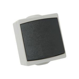 Bouton poussoir Perle Debflex gris s/film ip65
