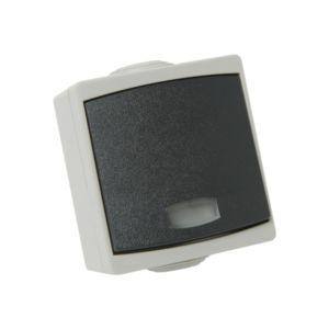 Bouton poussoir Perle Debflex gris avec voyant s/film ip65